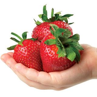 Whopper Honeoye Strawberry