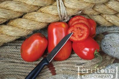 Cordova Tomato