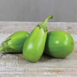 LIttle Green Eggplant