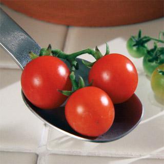 Tomato Red Currant