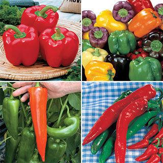 Our Best Pepper Collection