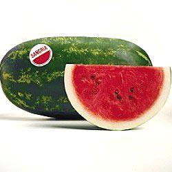 Sangria Hybrid Watermelon