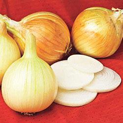 Gurney's Sweet Mesquite Hybrid Onion