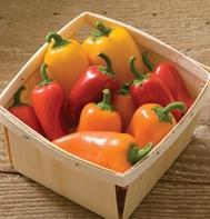 Lunchbox Pepper Mix (OG)