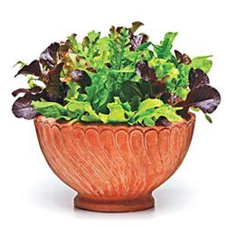 Simply Salad™ Alfresco Mix Leaf Lettuce