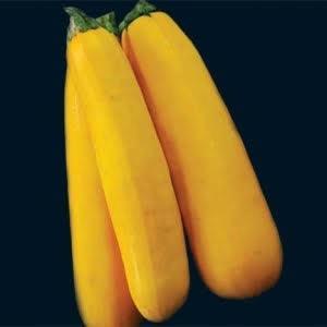 Squash, Zucchini, Golden, Bush