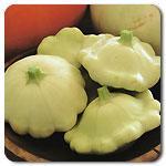 Organic Benning's Green Tint Pattypan