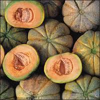 Melon, Oka