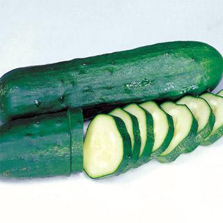 Organic Cucumber Marketmore Select