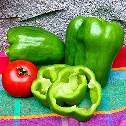 Gurney's Giant II Hybrid Sweet Pepper