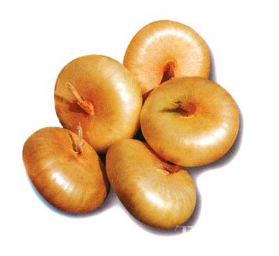 Borrettana Cipollini Onion