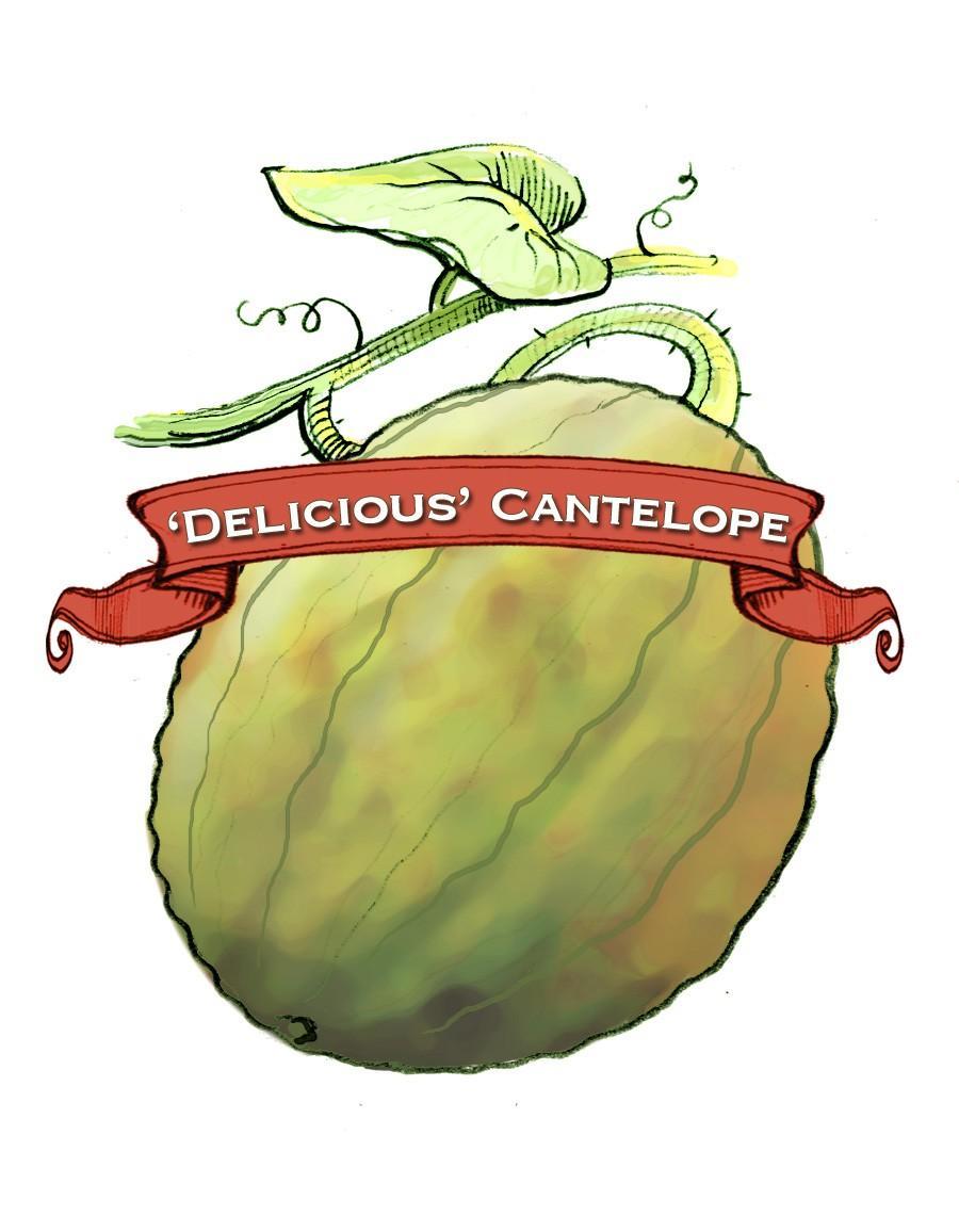Organic Delicious 51 Melon Seed, Pkt
