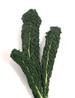 Nero Di Toscana Kale