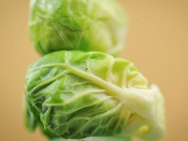 Catskill Brussels Sprouts