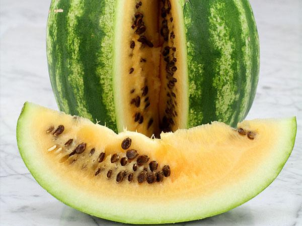 Hopi Yellow Watermelon