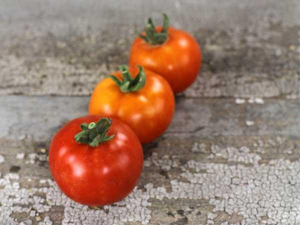 Al-Kuffa Tomato