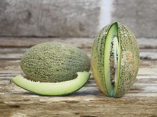 Afghan Honeydew Melon