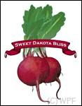 Organic Sweet Red Bliss Beet