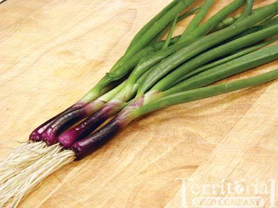 Red Baron Onion