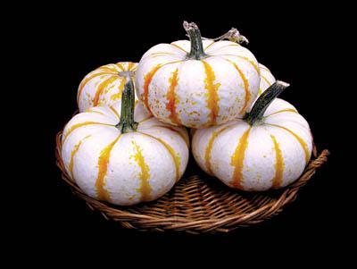 Lil' Pump-Ke-Mon Pumpkin