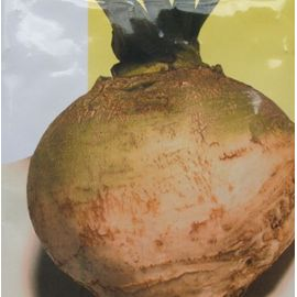 Collet Vert Rutabaga